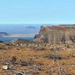 Dan inicio los trabajos para la restauración del hábitat de las cumbres de Famara